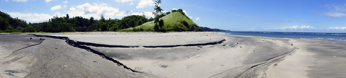 temboan beach turttle nesting area